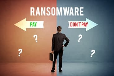to pay or not to pay ransomware image
